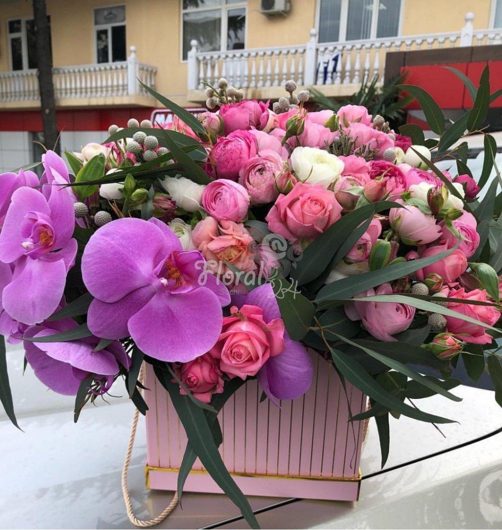 купить розы в теплице